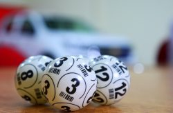 The Evolution of Lotteries