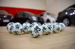 Where to Play Bingo and Win Like a Pro!